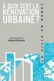 Jacques Donzelot - A quoi sert la rénovation urbaine ?.