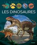 Agnès Vandewiele et Franco Tempesta - Les dinosaures.