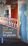 David Lelait-Helo - D'entre les pierres.