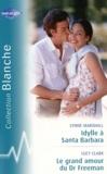 Lynne Marshall et Lucy Clark - Idylle à Santa Barbara ; Le grand amour du Dr Freeman.