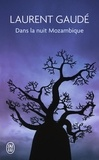 Laurent Gaudé - Dans la nuit mozambique - Et autres récits.
