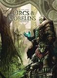 Jean-Luc Istin et Alex Sierra - Terres d'Arran : Orcs & Gobelins Tome 10 : Dunnrak.