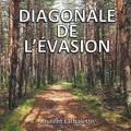 Laurent Larbalette - Diagonale de l'évasion.