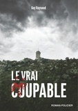 Guy Raynaud - Le vrai coupable.