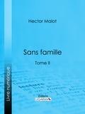 Hector Malot et  Ligaran - Sans famille - Tome II.