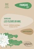 Rémy Arcemisbéhère - Français 1re L'oeuvre et son parcours - Baudelaire, Les Fleurs du Mal, parcours Alchimie poétique : la boue et l'or.