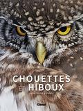 Guilhem Lesaffre - Chouettes et hiboux.