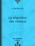 A. de Brevans et Edouard Riou - La Migration des oiseaux.