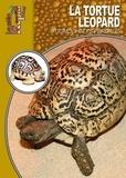 Mario Herz - La tortue léopard.