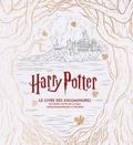J M Dragunas - Harry Potter, le livre des enluminures - 80 scènes cultes de la saga cinématographique à colorier.