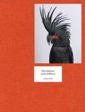 Leila Jeffreys - Des oiseaux.