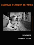 Alexandre Guerra - Promenade - Livre photographique.
