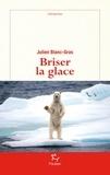 Julien Blanc-Gras - DEMARCHES  : Briser la glace.