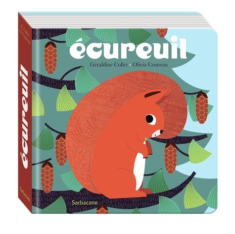 Ecureuil / Géraldine Collet |