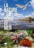 Marc Giraud - La nature en bord de mer.