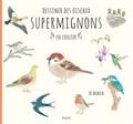 Ai Akikusa - Dessiner des oiseaux supermignons en couleur.