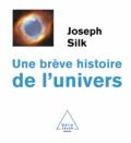 Joseph Silk - Une brève histoire de l'univers.