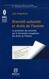 Julie Ringelheim - Diversité culturelle et droits de l'homme - L'émergence de la problématique des minorités dans le droit de la convention européenne des droits de l'homme.