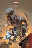 Jeph Loeb et Tim Sale - Hulk Gris.