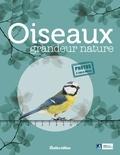 Guilhem Lesaffre - Oiseaux grandeur nature.
