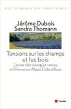 Jérôme Dubois et Sandra Thomann - Tensions sur les champs et les bois - L'essor des énergies vertes en Provence-Alpes-Côte d'Azur.