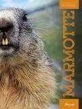 Maurice Dupérat - Marmotte.