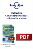 LONELY PLANET ENG - GUIDE DE VOYAGE  : Indonésie - Comprendre l'Indonésie et Indonésie pratique.
