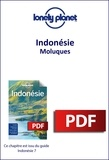 LONELY PLANET ENG - GUIDE DE VOYAGE  : Indonésie - Moluques.