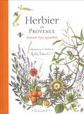 Michèle Delsaute Dognon-Schmitt - Herbier de Provence - Itinéraires d'une aquarelliste.