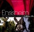 Ophélie Neiman - Ensisheim : les metamorphose d'une ville.