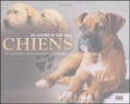 Derek Hall - Le livre d'or des chiens - La grande encyclopédie canine.