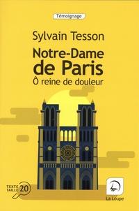 Sylvain Tesson - Notre-Dame de Paris - Ô reine de douleur.