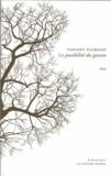 Vincent Flamand - La possibilité du garçon.
