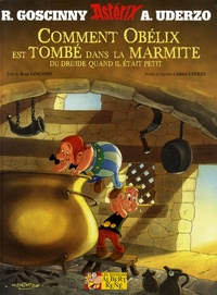 René Goscinny et Albert Uderzo - Astérix  : Comment Obélix est tombé dans la marmite du druide quand il était petit.
