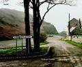 Campagnes françaises / [photographies de] Thibaut Cuisset | Cuisset, Thibaut (1958-2017) (Illustrateur)