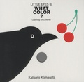 Katsumi Komagata - What Color?.
