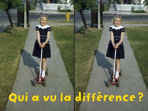 Qui a vu la différence ? / [conception, Rémi Noël]  