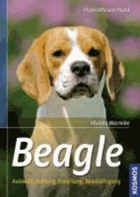Beagle - Auswahl, Haltung, Erziehung, Beschäftigung.