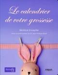 Béatrice Knoepfler - Le calendrier de votre grossesse.