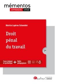 Béatrice Lapérou-Scheneider - Droit pénal du travail.