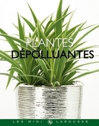 Bénédicte Boudassou - Plantes dépolluantes.
