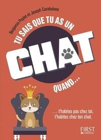 Tu sais que tu as un chat quand....pdf