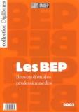 Benoît Bouyx - Les BEP.