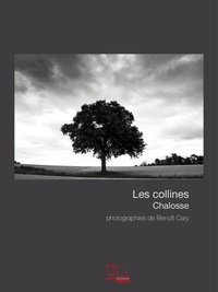Benoit Cary - Les collines. Chalosse.