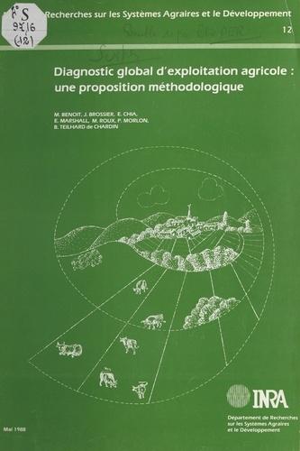 Diagnostic global d'exploitation agricole. Une proposition méthodologique