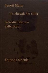 Benoît Maire - Un cheval, des silex.