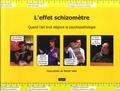 Benoit Vidal - L'effet schizomètre - Quand l'art brut dégivre la psychopathologie.