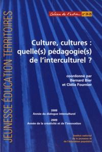 Bernard Bier et Clélia Fournier - Culture, cultures : quelle(s) pédagogie(s) de l'interculturel ?.