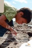 Bernard Collot - La pédagogie de la mouche.