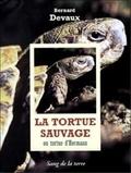 Bernard Devaux - La tortue sauvage ou Tortue d'Hermann.